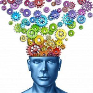 mmaginare-e-inventare-come-l-39-immaginazione-umana-e-l-39-uomo-creativo-come-il-cervello-intellige