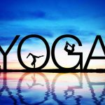 Yoga Festival-Niccolò Branca